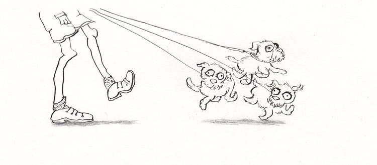 hondjes, drie, lijn, striptekening