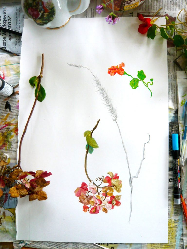 hortensia, acrylverf
