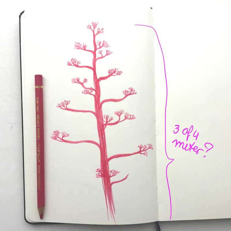 natuur tekening